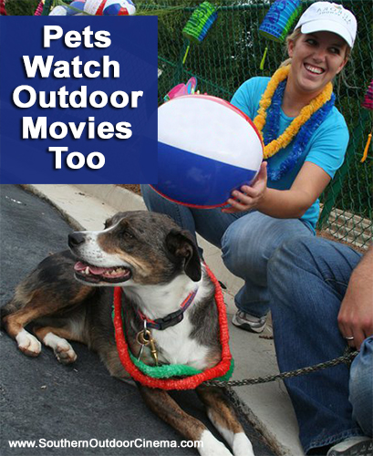 Pets watch outdoor movies too